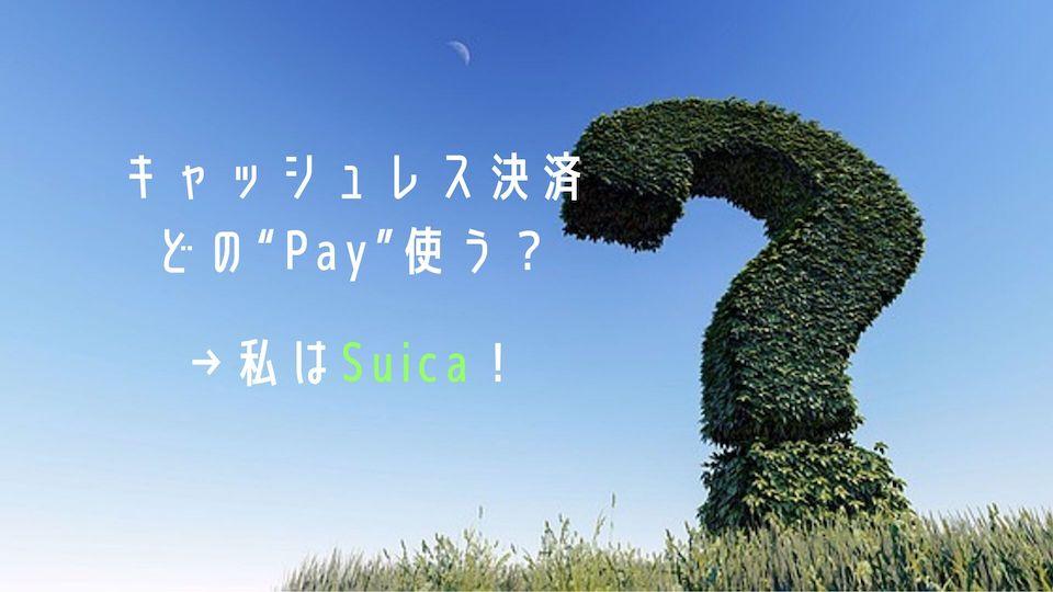 キャッシュレス決済どのPay使う?私はSuicaとクレカをメインで使う!